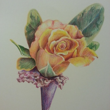 Wedding Flower (colored pencil)