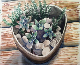 Succulents (watercolor)